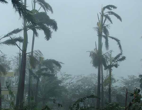 Реферат ураган по обж 8830